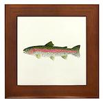 Rainbow Trout - Stream Framed Tile