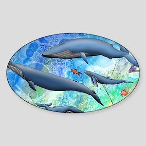 Whale Sticker (Oval)