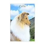 Collie (Rough) Mini Poster Print