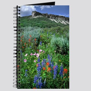 Wildflowers, Beautiful Colorado Journal