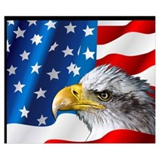 Bald Eagle On American Flag Poster