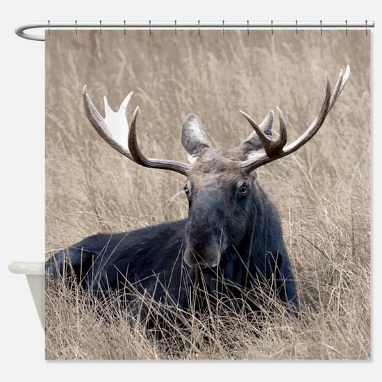 Shiras Moose Shower Curtain