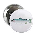 "Steelhead rainbow trout 2.25"" Button (100 pack)"