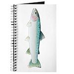Steelhead rainbow trout Journal