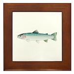 Steelhead rainbow trout Framed Tile