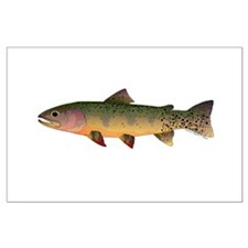 Cutthroat Trout stream Posters