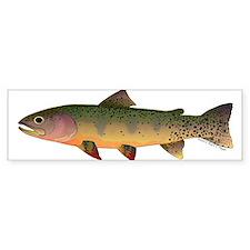Cutthroat Trout stream Bumper Sticker