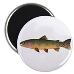 Cutthroat Trout stream Magnets
