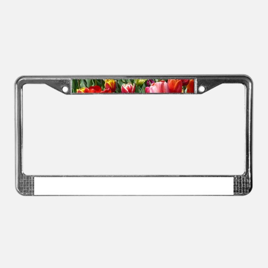 Tulip_2015_0207 License Plate Frame