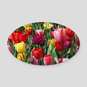 Tulip_2015_0207 Oval Car Magnet