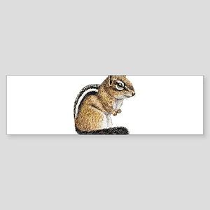 Chipmunk Cutie Bumper Sticker