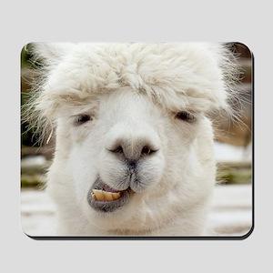 Funny Alpaca Smile Mousepad