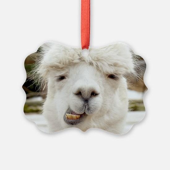 Funny Alpaca Smile Ornament