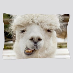 Funny Alpaca Smile Pillow Case