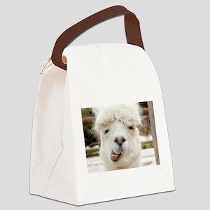 Funny Alpaca Smile Canvas Lunch Bag