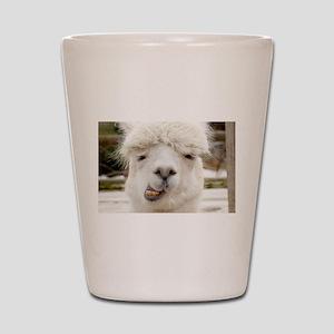 Funny Alpaca Smile Shot Glass