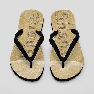 Shane Seashells Flip Flops