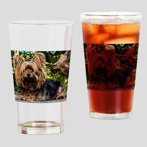 Yorkiiieeee Drinking Glass