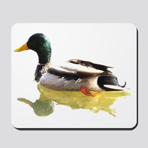 Self Reflection Mallard Mousepad