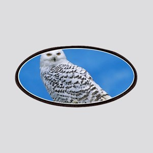 Snowy Owl Patch