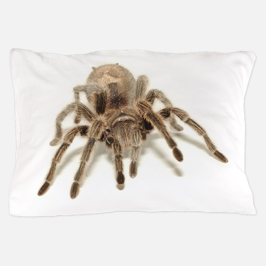 Tarantula Pillow Case