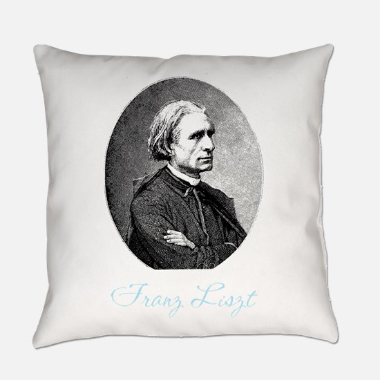 263Lizt.png Everyday Pillow