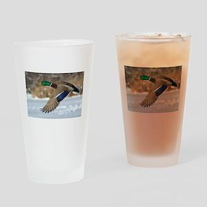 Mallard Duck Drinking Glass
