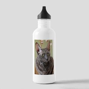 cornish rex blue Water Bottle