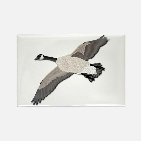 Canada goose-No Text Rectangle Magnet