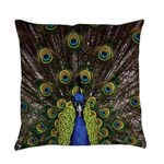 Peacock Everyday Pillow