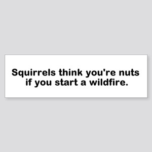 Squirrels Think You're Nuts Bumper Sticker.