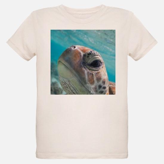 Sea Turtle Close-Up T-Shirt (kids)