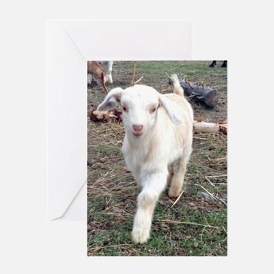 Cute Livestock Greeting Card