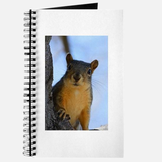 Got Nuts? Journal