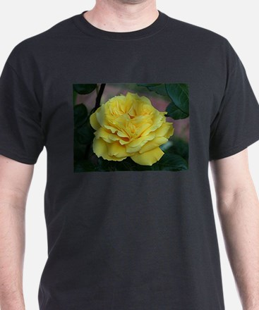 Yellow rose flower in bloom in garden T-Shirt