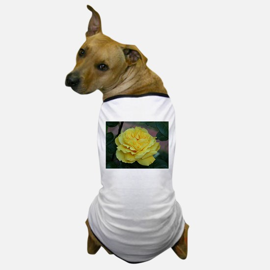 Yellow rose flower in bloom in garden Dog T-Shirt