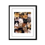 Cats Framed Panel Print
