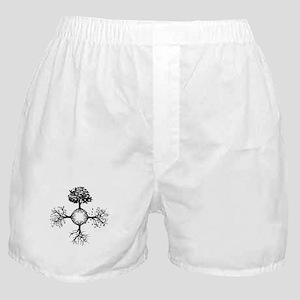 4 Seasons Ink Boxer Shorts