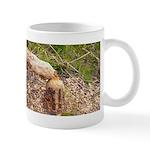 Original Beaver Tree Photograph Mug