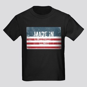 Made in Willisville, Illinois T-Shirt