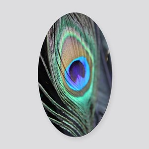 Peacock Feather Bright Oval Car Magnet