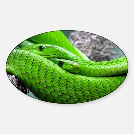 Cute Snake skin Sticker (Oval)