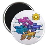"Siamese Betta Fish #2 2.25"" Magnet (100 Magne"