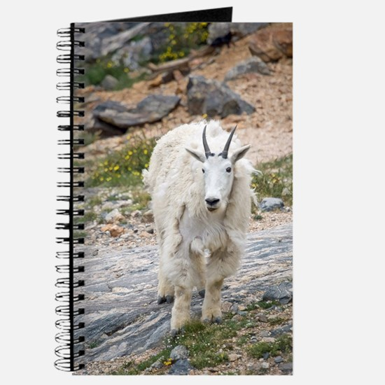 Mountain Goat Journal