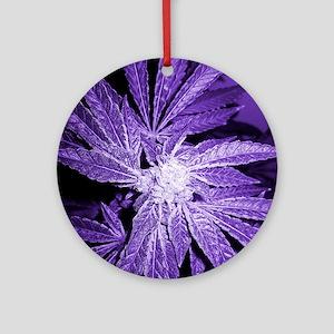 Purple Cannabis Ornament (Round)