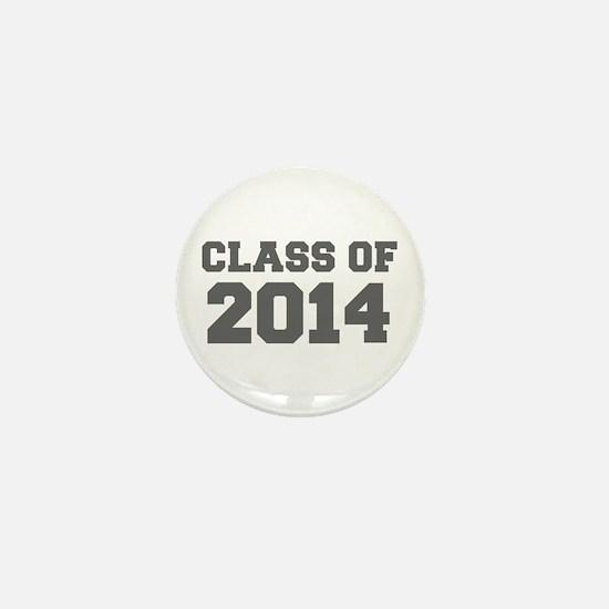 CLASS OF 2014-Fre gray 300 Mini Button