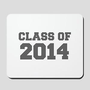 CLASS OF 2014-Fre gray 300 Mousepad