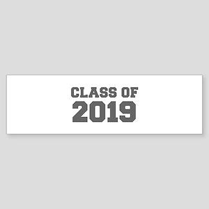 CLASS OF 2019-Fre gray 300 Bumper Sticker