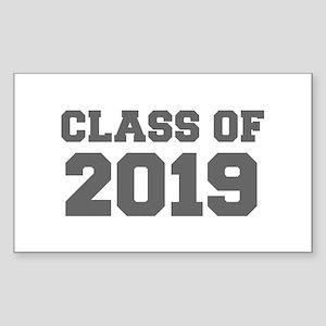 CLASS OF 2019-Fre gray 300 Sticker