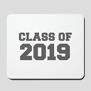 CLASS OF 2019-Fre gray 300 Mousepad